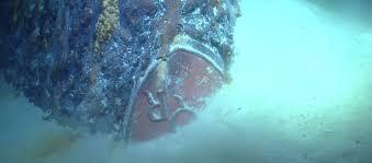 Risultati immagini per regia nave roma