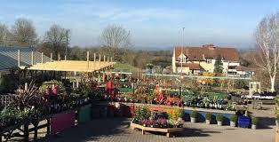 about cleeve nursery garden centre