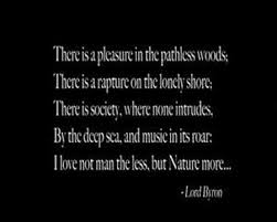 Into The Wild Quotes Awesome Quote From Into The Wild Movie YouTube