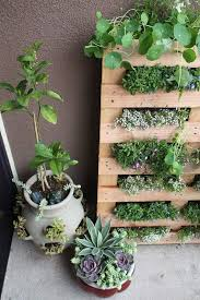 a mini herb garden in the living wall style looks great in the kitchen