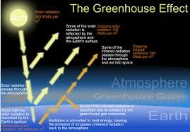Long Short Term Effects of Global Warming Education Seattle PI global  warming essay