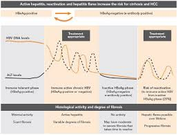 Hep B Serology Chart Primary Care Management Of Hepatitis B Quick Reference