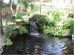 Backyard Ponds Backyards Mesmerizing Pond Backyard Pond Backyard Landscaping