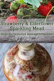 strawberry elderflower sparkling mead