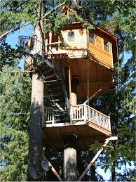 home design treehouse plans for adults best of interior brilliant modern tree house ideas you modern tree house plans64 modern