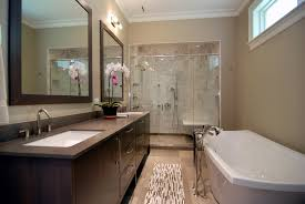 Renovated Bathroom Pictures Fancy Plush Design Interior Designs Of Bathrooms  Best 1.