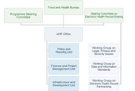 Ehealth Org Chart Ehealth Governance Of Ehr Programme