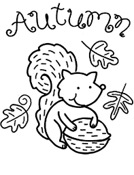 Small Picture Autumn Animal Squirrel Coloring Pages Batch Coloring