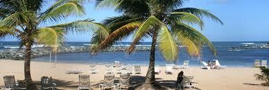 emby suites dorado del mar beach resort pr on site beach palms