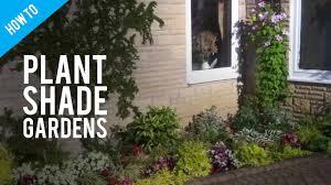 Shade Garden Design Zone 4 A Guide To Shade Gardening Shade Garden Plants