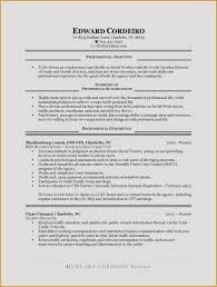 20 Fresh Objective Summary For Resume Vegetaful Com