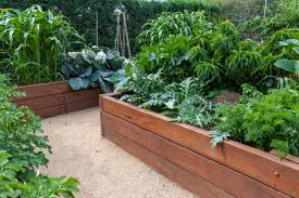 with a raised garden bed you can grow twice as much in half the space mike mcgrath shares tips on how to raise the garden yourself thinkstock