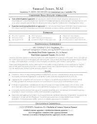 Commercial Appraiser Sample Resume Delectable Real Estate Resumes Resume Overview Statement Samples Real Estate