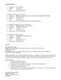 Report developer resume