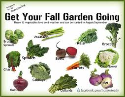 Planting Fall VegetablesFall Garden Crops