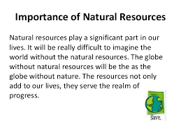 on importance of nature conservation essay on importance of nature conservation
