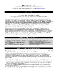 IT Director Resume Sample & Template