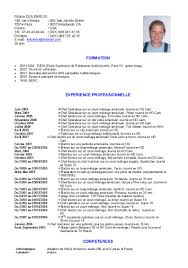 Resume In French Cv Examples Pdf En Francais Ib Felicie Cv French Jobsxs 4