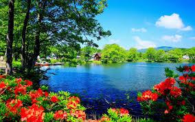 beautiful nature scenery wallpapers beautiful scenery wallpaper desktop wallpapers hd