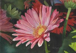 watercolor painting gerbera daisy by kathy nesseth