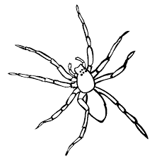 Small Picture Spider coloring page Animals Town Animal color sheets Spider