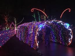 both the visitors center and the conservatory are open during garden of lights various bands and choirs perform each night in the visitors center