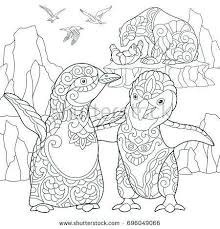 Buy Polar Bear Coloring Pages Temaisclub