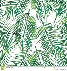 Palm Leaf Pattern Extraordinary Palm Leaf Seamless Pattern Stock Vector Illustration Of Botany