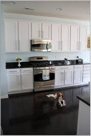 can i paint my kitchen cabinetsTile Floors Can I Paint My Kitchen Cabinets White Ge Electric