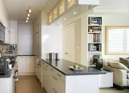 Terrific Galley Kitchen Designs With Island Pictures Decoration Ideas