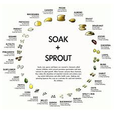Soak And Sprout Chart Soaking Sprouting Nuts Seeds Grains Easy Chart