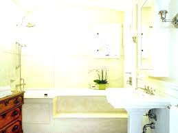 garden tub shower combo bathtub stylish design ideas corner with step curtain size dimensions remodel