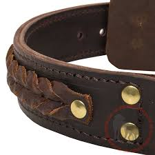 brown leather collar for canine training