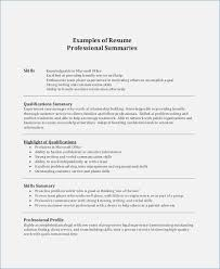 Professional Summary Examples For Resume Globish Me