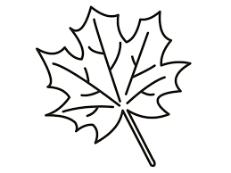 Small Picture Beautiful Leaf Coloring Pages Preschool Contemporary New