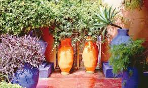 Small Picture Alan Titchmarsh on growing Mediterranean plants in your garden