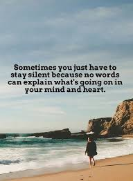 Sometimes Quotes Unique Inspirational Life Quotes Sometimes You Just Have To Stay Silent