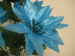 Amazonde 4 Buchsen Blau Türkis Weihnachten Glänzt