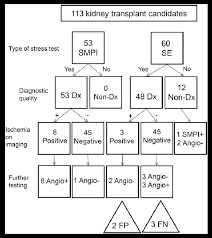 Flow Chart Of Testing For Cardiac Risk Stratification