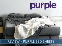 Stretchy Bamboo Sheets Overview Of Purple Bed Home Interior Design ...