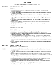 Resume For Sales Manager Senior Sales Manager Resume Samples Velvet Jobs 11