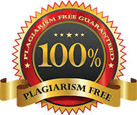 Things to Know About Term Paper Plagiarism  ThePaperExperts com