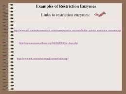 Restriction Digest Laboratory Ppt Download