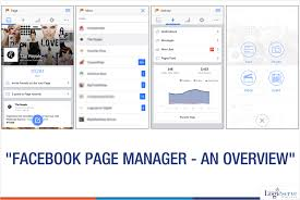 fb page manager collage logicservedigi