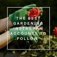The Best Gardening Instagram Accounts to Follow