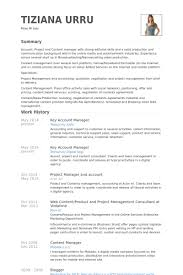 Account Manager Resume Interesting Key Account Manager Cv Kazanklonecco