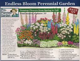Small Picture Perennial bed plan from Michigan Bulb Co west garden Yard