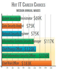 security salary cyber security degree fills leadership gap