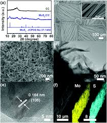 A Supersensitive Biosensor Based On Mos 2 Nanosheet Arrays For The