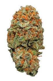 AK-47 Strain - Hybrid Cannabis Review, CBD, THC, Terpenes : Hytiva